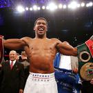 Anthony Joshua is scheduled to be back in action next April (Nick Potts/PA)