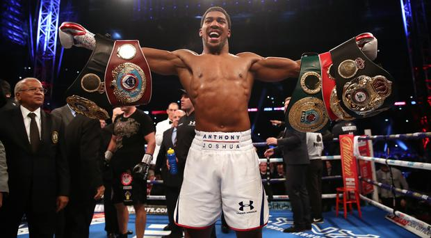 Anthony Joshua will defend his WBA, IBF and WBO heavyweight titles against Andy Ruiz Jr on June 1 (Nick Potts/PA)