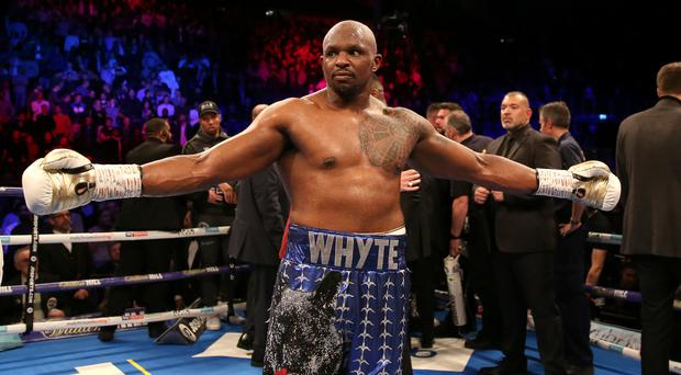 Dillian Whyte is involved in a war of words with heavyweight rival Tyson Fury (Steven Paston/PA)