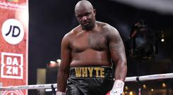 Dillian Whyte has been reinstated as mandatory challenger for the WBC World Heavyweight title (Nick Potts/PA)