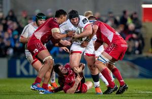 Upward arc: Tom O'Toole in action for Ulster