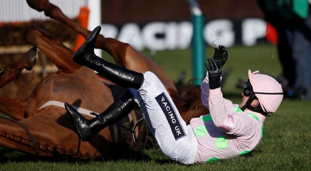 Power out: Ruby Walsh and Annie Power choose a very poor time to have a quick game of Twister at Cheltenham