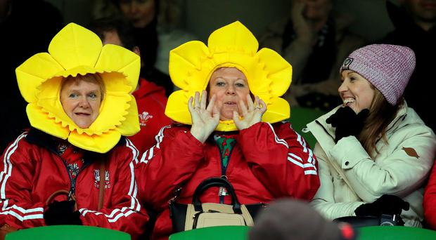 Looking daff: Say what you like about the Welsh, you have to take your hat off to them in the headwear stakes
