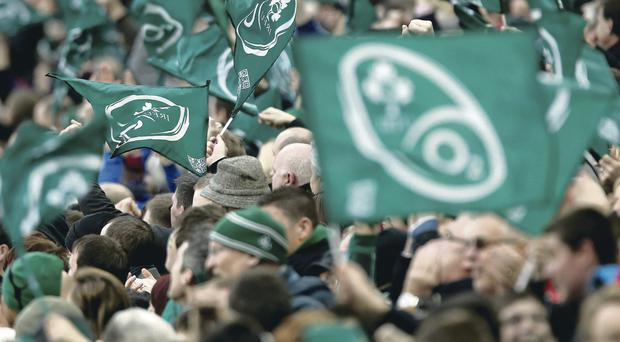 Fans generate electric atmosphere at Ireland's clash with New Zealand at the Aviva last Sunday