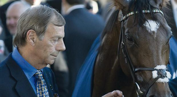 Ascot Races...ASCOT, ENGLAND - OCTOBER 15: Sir Henry Cecil with Frankel at Ascot racecourse on October 15, 2011 in Ascot, England. (Photo by Alan Crowhurst/Getty Images)...S