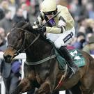 Briar Hill is just one of champion trainer Willie Mullins' star-studded line-up for next week's Cheltenham Festival