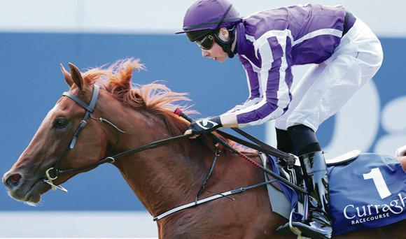 Aidan O'Brien has high hopes for Australia in today's 2000 Guineas at Newmarket