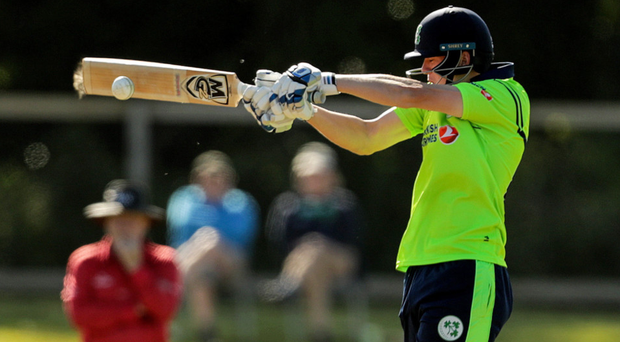 Big hit: Gareth Delany is in good form for Ireland