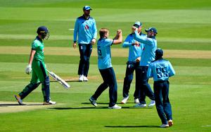 Fine form: David Willey celebrates after taking the wicket of Andrew Balbirnie