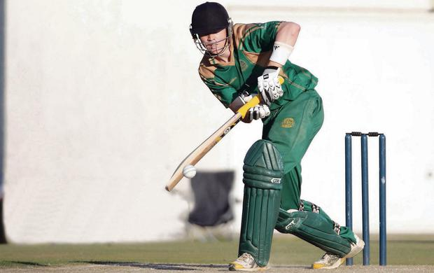 Moving up: North Down's Nick Larkin is set to be handed the role of opening batsman for the Northern Knights when they take on the North West Warriors in their inter-pro clash which starts today