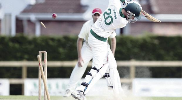 You're out: North Down's Tim Carson is bowled by Waringstown's Phil Eaglestone in yesterday's Premier League game