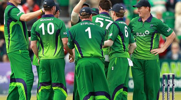 Ireland last played England on home soil in August 2011