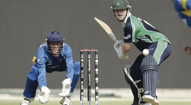 Swift half: Paul Stirling on way to half century for Ireland against Namibia in Abu Dhabi