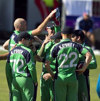 Trent Johnston and wicketkeeper Gary Wilson share a high-five. The pair, along with Kevin O'Brien, were instrumental in Ireland's win over the United Arab Emirates.