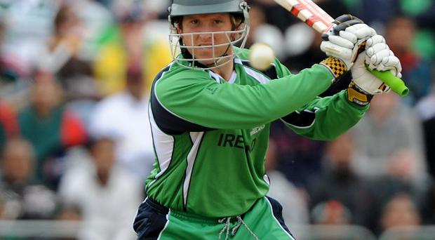 Gary Wilson played a key role in Ireland's win