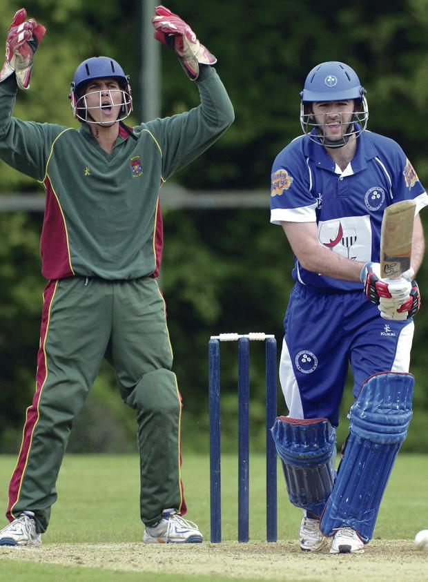 Oh so close: Muckamore's Neil Gill survives an enthusiastic lbw appeal by Merrion wicketkeeper Tyler Smyth at Moylena before the RSA Senior Cup first round tie was abandoned