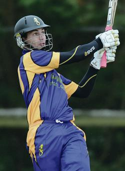 On strike: James Shannon hit 38 from 29 balls for Instonians last nigh