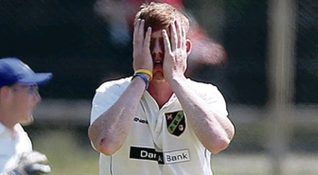 Prize guy: Craig Young took the wicket of Andrew Poynter