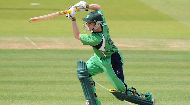 William Porterfield will lead Ireland at the World Cup