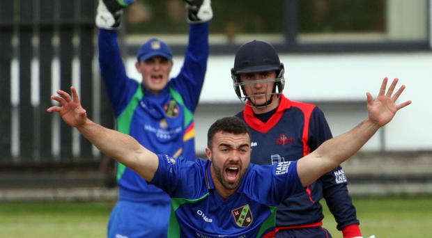 How's that: Warriors' Stuart Thompson appeals for lbw in the clash with Northern Knights at Coleraine