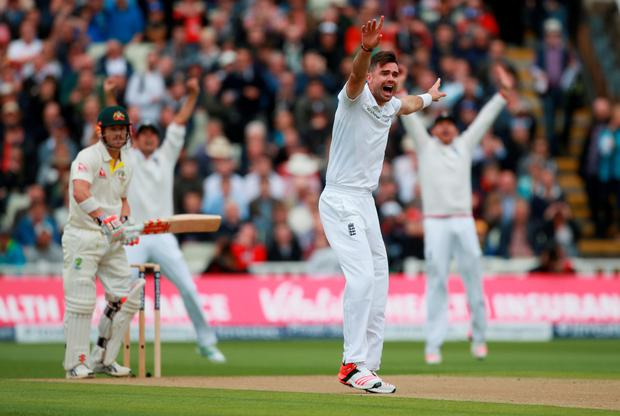 Gotcha: England's James Anderson successfully appeals for an lbw against Australia's David Warner
