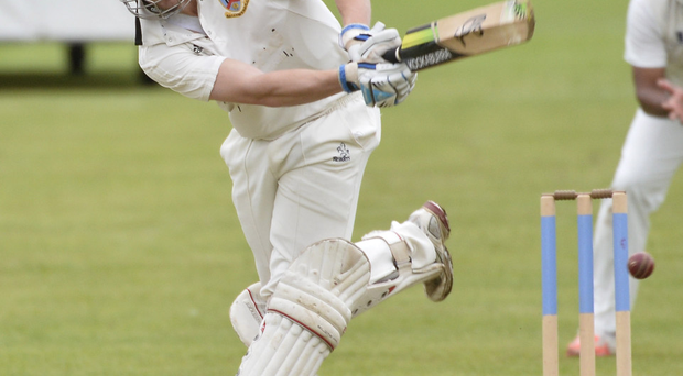 Sinking feeling: Michael Taylor bats in vain as his Ballymena side lose again to Carrick