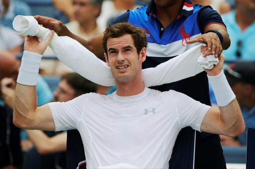 Hard work: Andy Murray on the way to a five sets victory over Adrian Mannarino last night