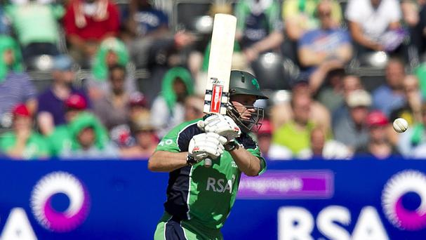 William Porterfield led from the front as Ireland earned a series win