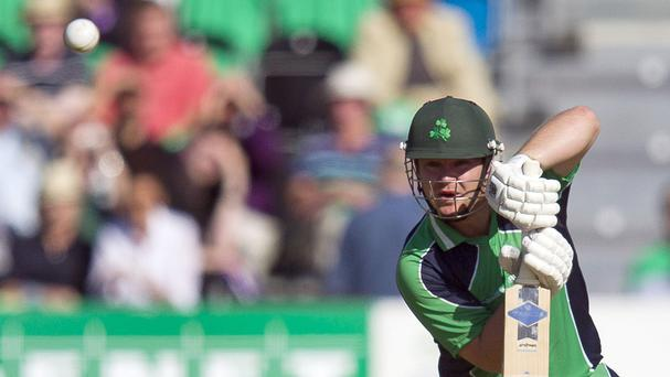 William Porterfield struck a half-century for Ireland in Abu Dhabi
