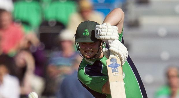 Paul Stirling hit a quickfire 30 in Ireland's heavy defeat to Australia