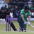 William Porterfield is Ireland skipper