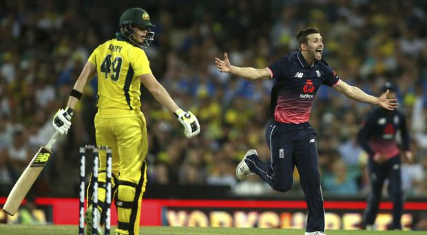 Mark Wood celebrates the wicket of Steve Smith
