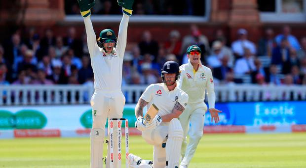 How's that: Australia's Tim Paine celebrates after Nathan Lyon takes the wicket of England's Ben Stokes for LBW yesterday