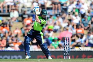Off bat: William Portserfield is key for Ireland, with bat and ball