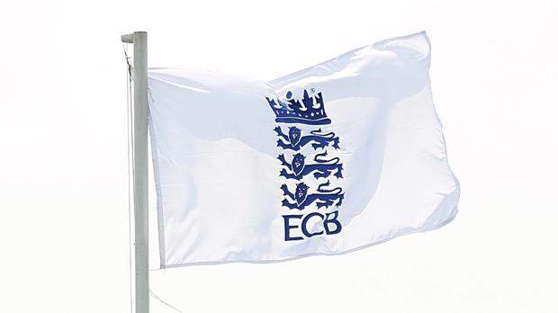 Ian Watmore will take over as ECB chairman at the end of August (PA)