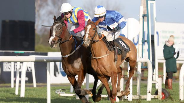 Big battle: Adam Short on board So Near So Far (right) on his way to victory at Down Royal yesterday