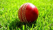 Local cricket was dealt a hammer blow last night when the Northern Ireland Executive ruled that there can be no spectators when the season gets under way next Friday night. (stock photo)