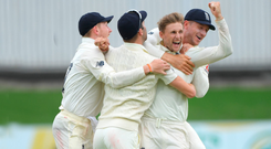 Got him: Joe Root celebrates after England take a wicket en route to victory over South Africa