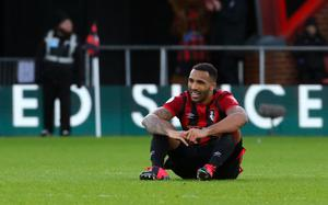 Callum Wilson struggled for form as Bournemouth were relegated from the Premier League (Mark Kerton/PA)