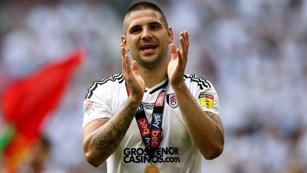 Aleksandar Mitrovic has backed Fulham to prosper in the Premier League