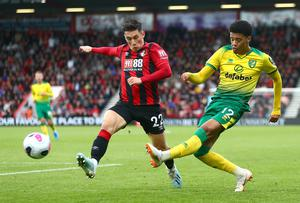 Aiming high: Jamal Lewis wants to taste success with both Norwich and Northern Ireland in near future