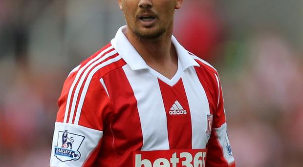 Stephen Ireland, pictured, is not yet ready to return to the Ireland fold, according to Mark Hughes