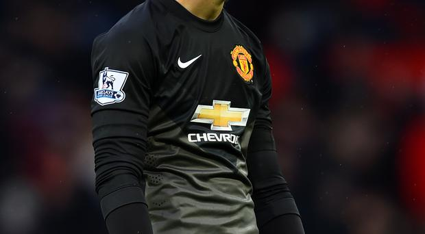 Safe hands: David de Gea has shone at Man United this year