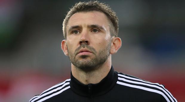 Gareth McAuley knows how much qualifying for Euro 2016 would mean to Northern Ireland's fans