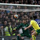 Chelsea striker Michy Batshuayi scores against Norwich