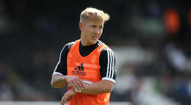 Lewis Holtby headed Hamburg's second