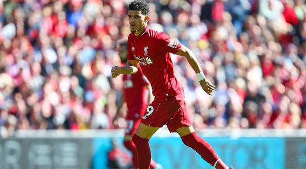 Liverpool striker Dominic Solanke is relishing the prospect of seeing the Champions League final up close.