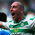 Within reach: Celtic captain Scott Brown (pictured) has backed Neil Lennon to pick up where Brendan Rodgers left off with cup final succes