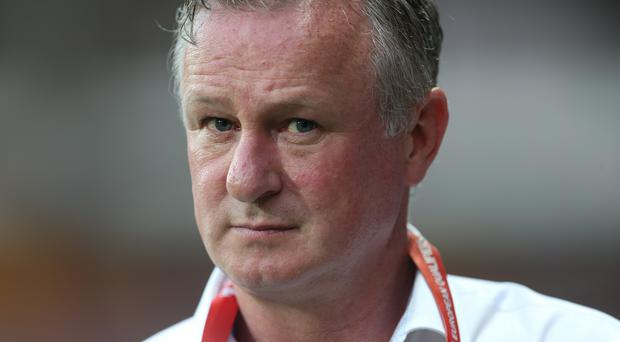 Michael O'Neill has challenged his team to take a 'big scalp' in Euro 2020 qualifying (Steven Paston/PA)