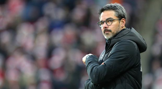 David Wagner is preparing for his first Revierderby as a coach (Richard Sellers/PA)